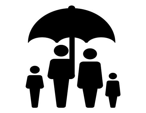 Insurance seo case study